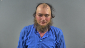 Man faces DUI charges after his horse-drawn carriage sideswipes passing car