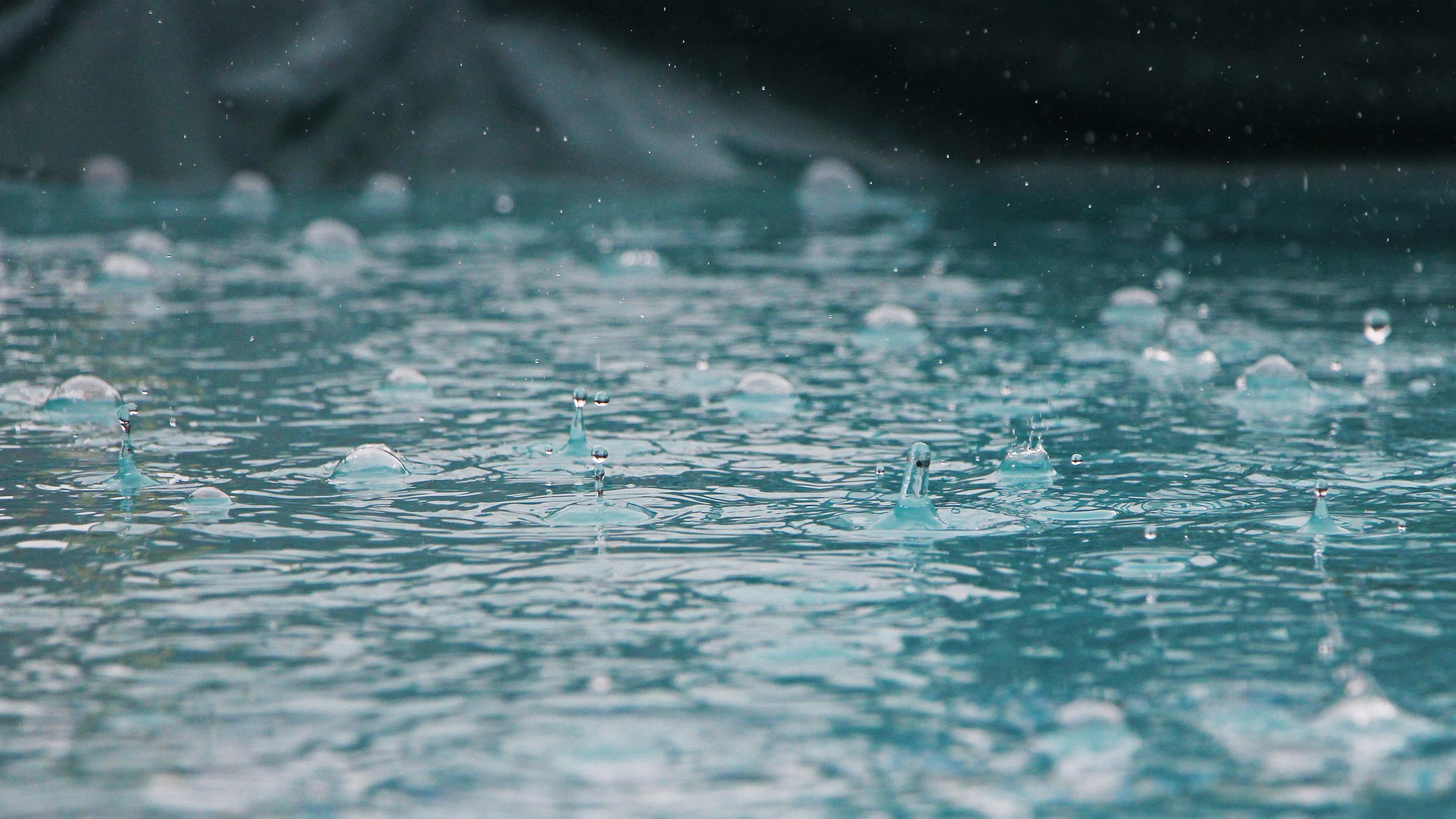 Rainout postpones Bryce Harper's latest return to Washington