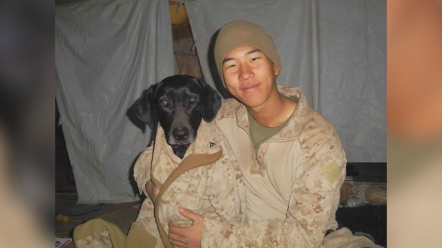 After 6 years, Marine reunites with K-9 who served by his side in Afghanistan